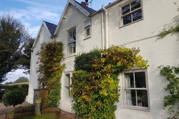Victorian Windows in Agate Grey