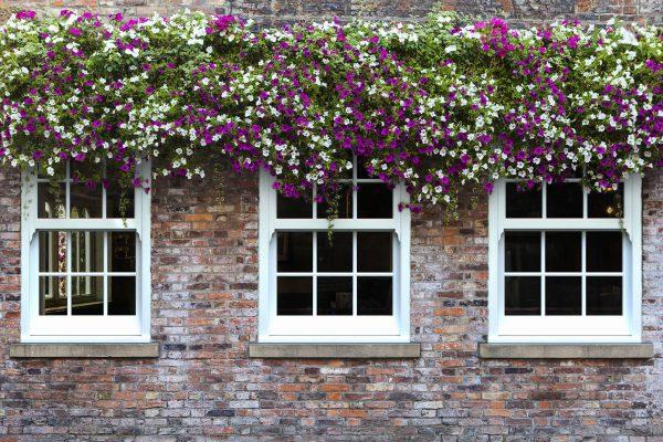 uPVC sliding sash windows sheffield